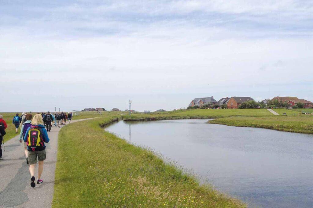 Ø-vandringer med Rønshoved Højskole på Hallig Hooge i vadehavet